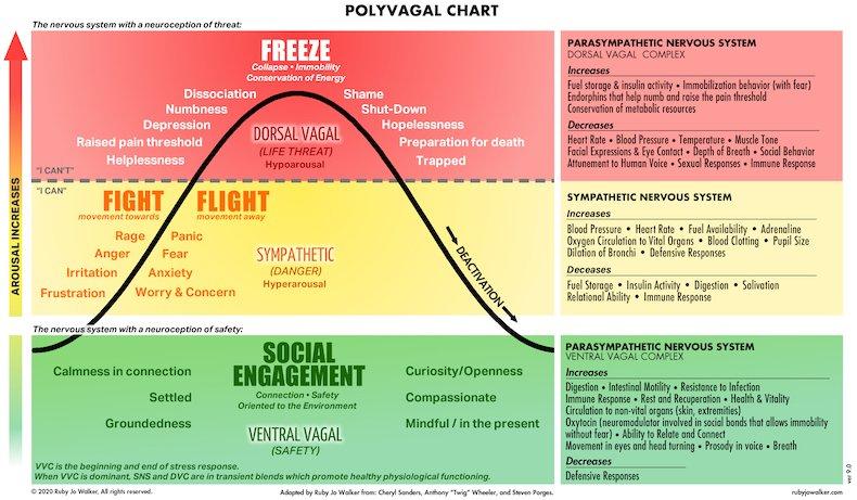 Polyvagal Chart by Ruby Jo Walker