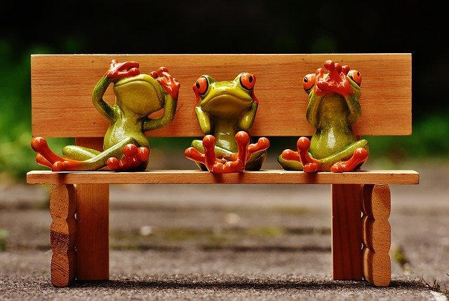 See, hear and speak no evil Frogs